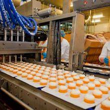 Как делают мороженое на заводе? Экскурсия на фабрику мороженого