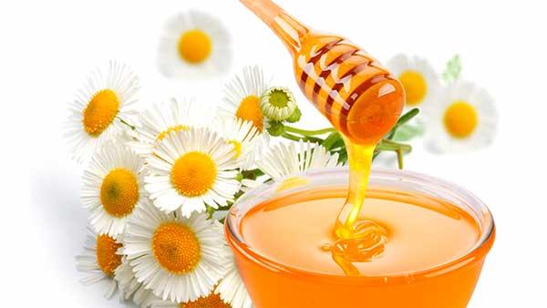 Мёд при гастрите